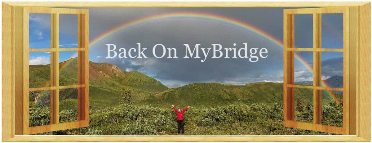Back on my Bridge